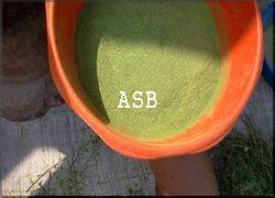 Hépatite B Plantes pour en finir Traitement naturel